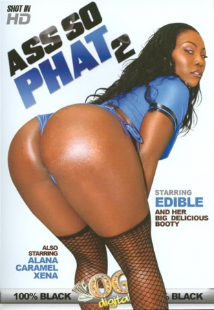 Ass So Phat 2 (2014) DVDRip