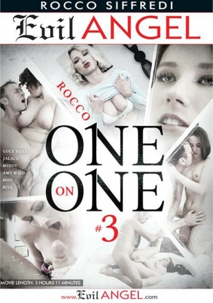Rocco One On One 3 (2015) DVDRip