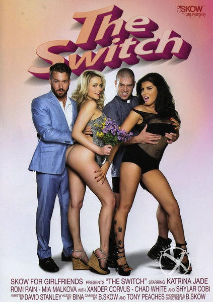 The Switch (2016) DVDRip