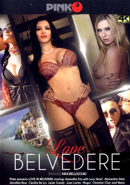 Love In Belvedere (2016) DVDRip