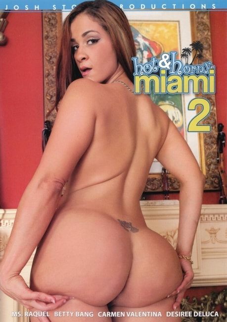Hot & Horny In Miami 2 (2016) DVDRip