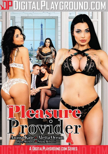 The Pleasure Provider (2016) DVDRip