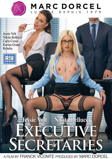 Executive Secretaries (2016) DVDRip