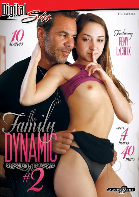 The Family Dynamic 2 (2017) 2 Disc DVDRip