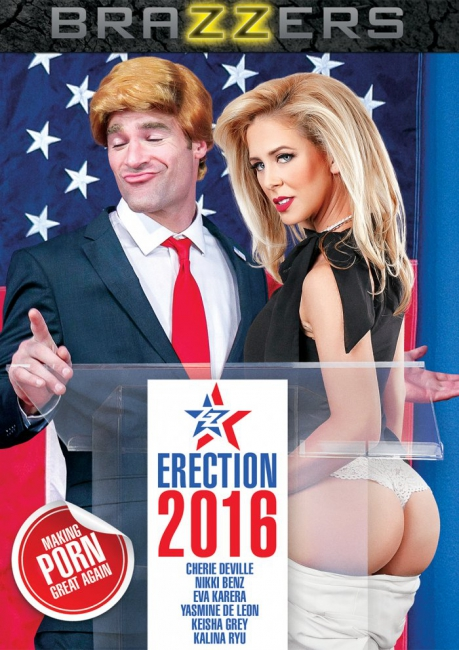 ZZ Erection 2016 (2017) DVDRip