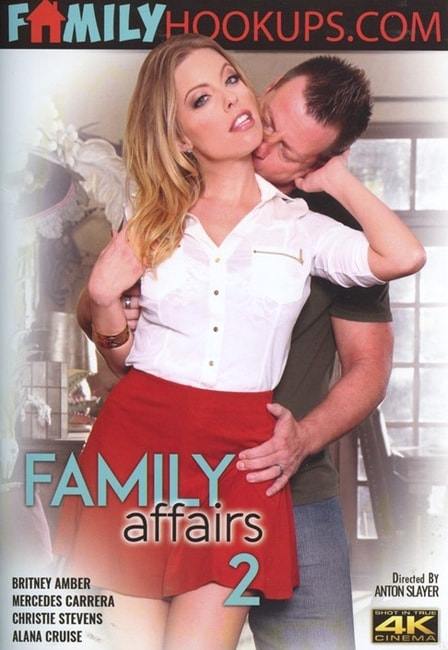 Family Affairs 2 (2017) DVDRip