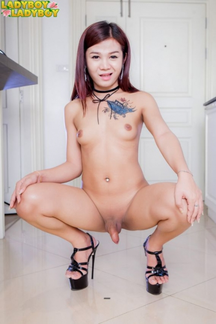 Ladyboy-Ladyboy - Adorably Hot Apple! - Dildo And Cumshots With Apple! -  HD-1080p